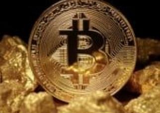 Cryptoeconomist's Newsletter