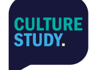Culture Studies, by Anne Helen Petersen